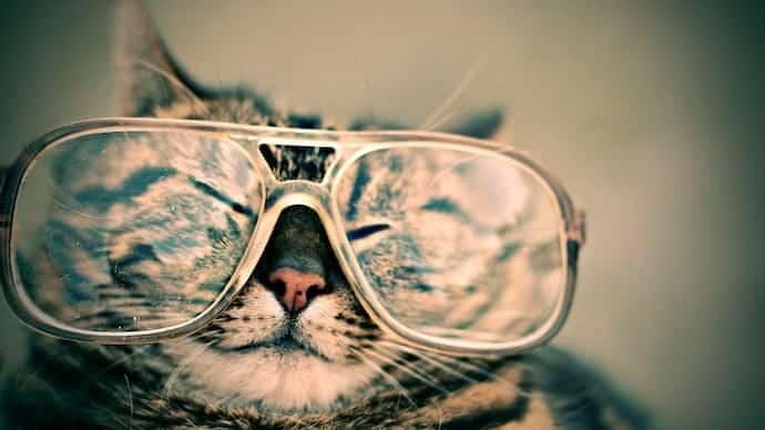 上野由岐子の白いメガネのメーカーは
